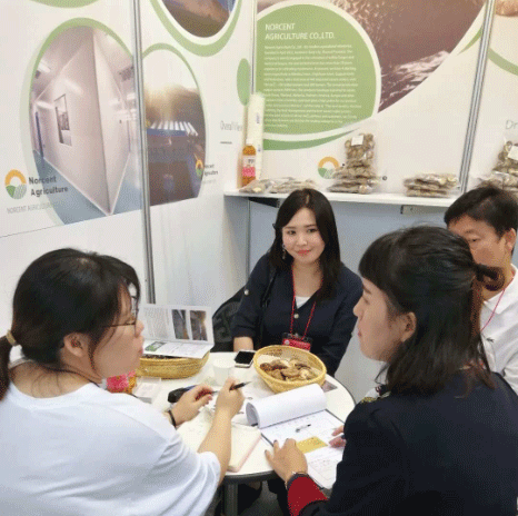Norcent Agriculture Exhibited at Seoul Food Exhibition 2018-3