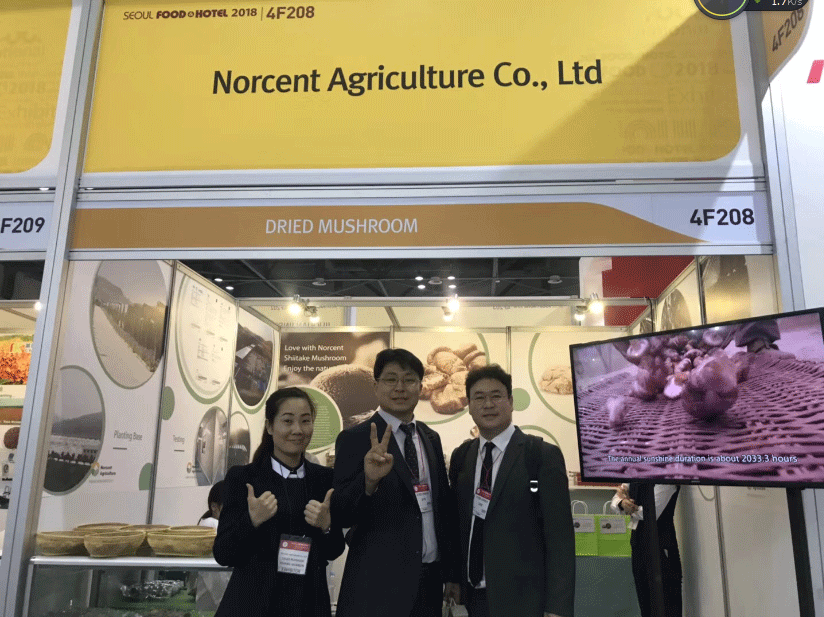Norcent Agriculture Exhibited at Seoul Food Exhibition 2018-4